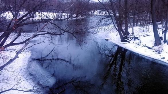 Alewife Brook in Winter 5a