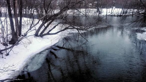 Alewife Brook in Winter 4b