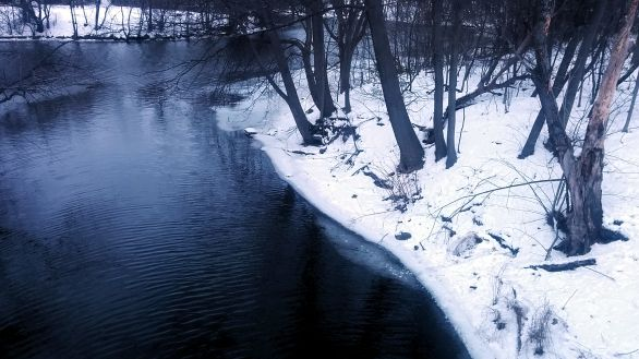 Alewife Brook in Winter 3a