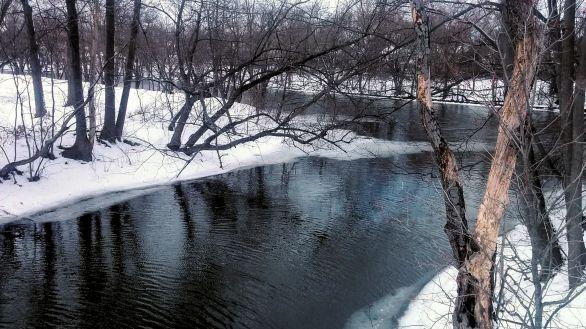 Alewife Brook in Winter 2b