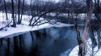 Alewife Brook in Winter 2a