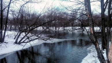 Alewife Brook in Winter 6b