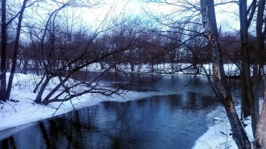 Alewife Brook in Winter 6a