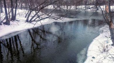 Alewife Brook in Winter 1b