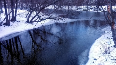 Alewife Brook in Winter 1a