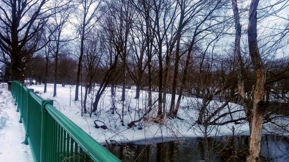 Alewife Brook and Mystic River 4