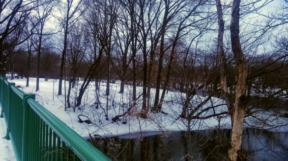 Alewife Brook and Mystic River 3