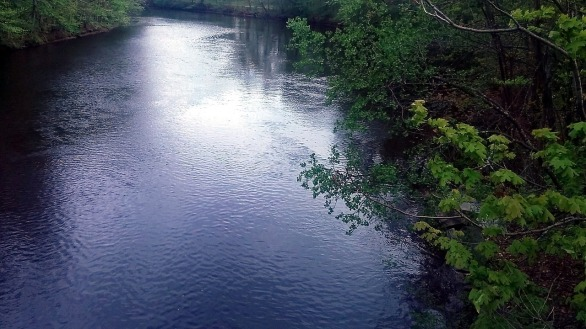 Mystic River in Spring 2