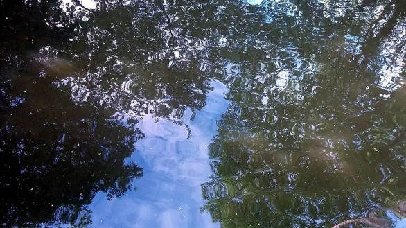 Reflecting Ripples 4