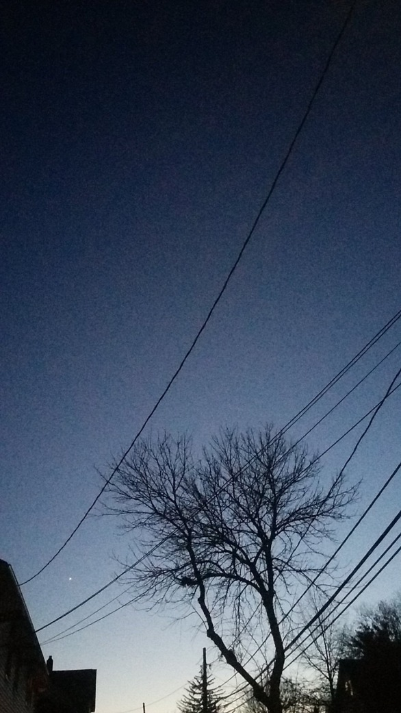 Lines at Dusk 1