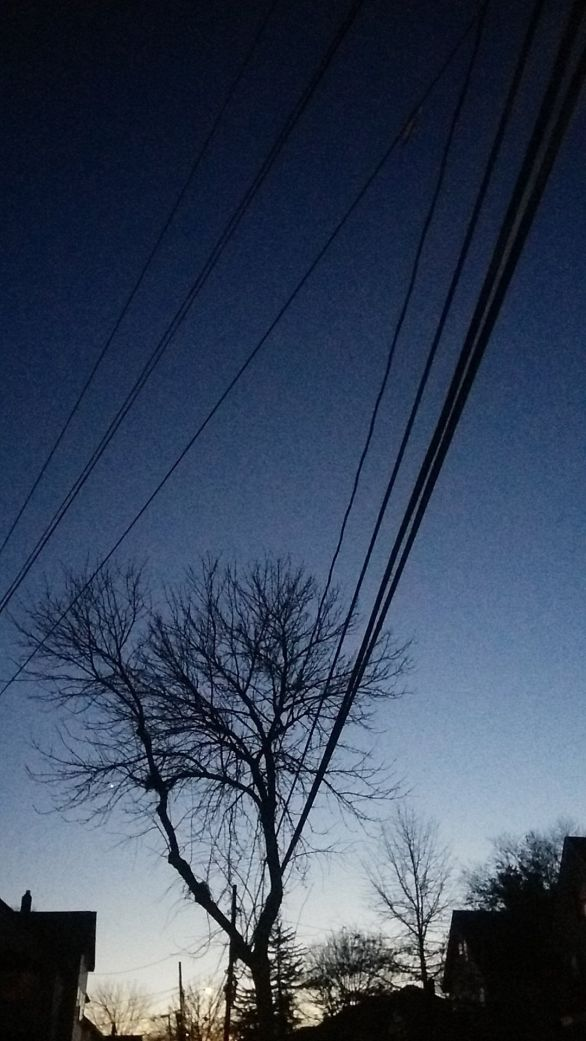 Lines at Dusk 2