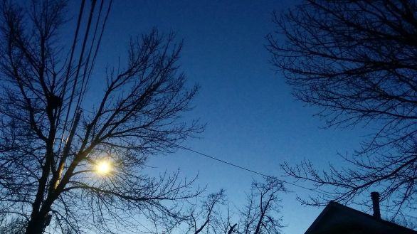 Lines at Dusk 4