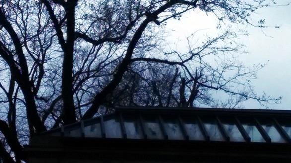 Overcast 1