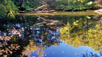 Early-Fall Reflections in Mystic River 1