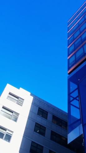 Edges on Blue 1