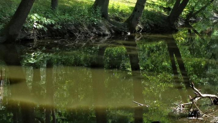 Muddy River 3