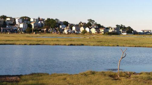 Belle Isle Marsh B