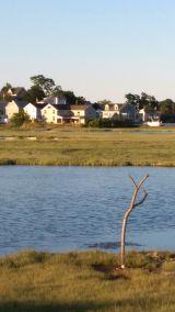 Belle Isle Marsh C