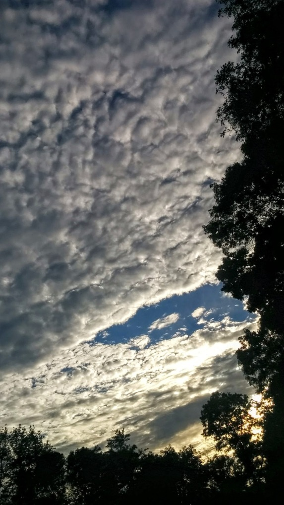 Late Afternoon Clouds 10