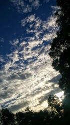 Late Afternoon Clouds 7