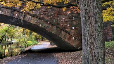Longwood Avenue Bridge in the Fall 1