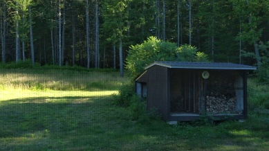 Summer in Vermont 1b