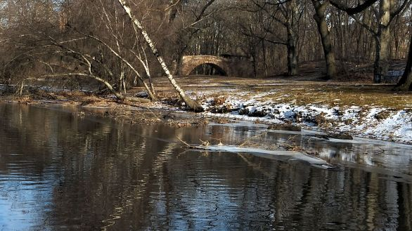 By Muddy River in Winter A